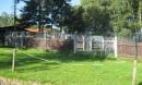 altbau-hundehaus-4-